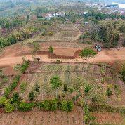 Tanah Kavling 350m Dari Kampus UIN 3 Kota Batu