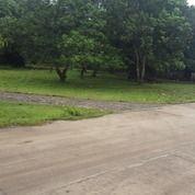 Tanah SHM Desa Dangdang Cisauk Tangerang