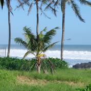Tanah Beach Front Di Sewakan Kawasan Pasut Kerambitan Tabanan