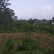 Tanah NOL Jalan Di Raya Kasembon Batu Malang AREA Strategis