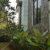 Rumah Sewa Di Bona Vista Residence Lebak Bulus