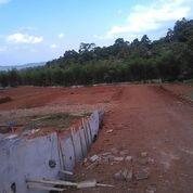 Perumahan Avocado Hills
