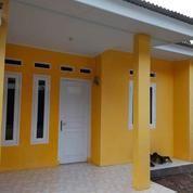 Rumah Minimalis Siap Huni Dasana Indah Babakan Bonang Gading Serpong