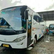 Big Bus Mercy Tahun 2009 Karoseri Adiputro Surat Kumplit Siap Kerja