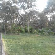 Tanah Datar Pinggir Jalan Pemukiman Pedesaan Di Sawit Purwakarta