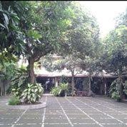 Hotel Asri Di Gedong Kuning Jogja Untuk Yg Ingin Berinvestasi Harga Neg