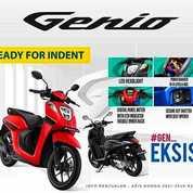 Honda Genio 110cc