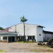 Pabrik Sungi Wetan Kraton Poh Jentrek Pasuruan