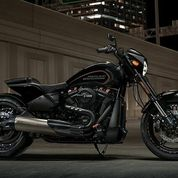 Harley Davidson - FXDR 114 Softail
