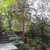 Villa Asri Nan Cantik Di Sedayu Bantul