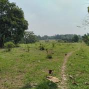 Tanah Strategis Pinggir Jalan Raya Tegal Jampang Hambulu Kemang Bogor