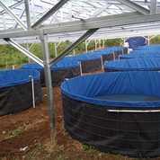 Kolam Bundar Full Set Ukuran D1 T1