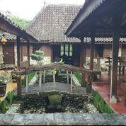 Villa Joglo Limasan Tanah 800m2 Kaliurang Pakem Jogja