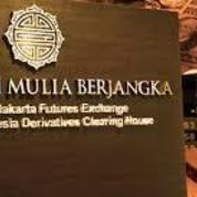 PT. Mentari Mulia Berjangka