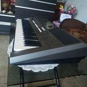 Musik - Keyboard Yamaha PSR E443