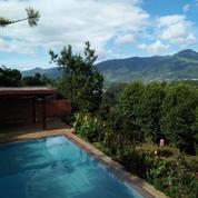 Sewa Villa Cisarua Puncak Bogor