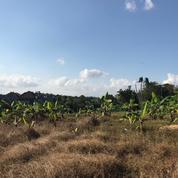 Leasehold Tanah Di Padonan Dalung Berawa Canggu