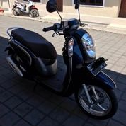 Scoopy ESP Idling Stop 2016 (Midnight Blue)