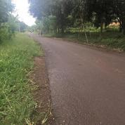 Tanah, Desa Cibukamah Purwakarta