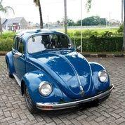 Volkswagen Beetle Kodok