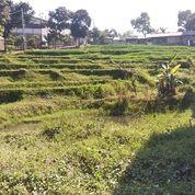 Lahan Bagus Untuk Dijadikan Rumah Megah Di Pasanggrahan Cilengkrang 1 Kota Bandung