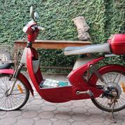 Motor Listrik Sepeda Listrik Betrix Bekas