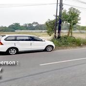 Tanah Harga Ok Banget Satu Hamparan Kosong Di Serang Tangerang