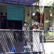 Rumah Murah Jarang Ada Di Bintraro