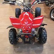 Motor Mini ATV Quad Bike 50 Cc- ATV3 HARGA DISCOUNT & BEBAS ONGKIR LOH...