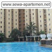 Sewa Apartemen Harian Mediterania Palace Kemayoran 2 BR Full Furnished