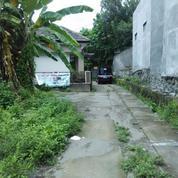 Tanah Pekarangan Di Kota, Selatan Universitas Cokroaminoto(Kode Iklan D.326)