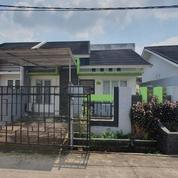 BU, Rumah Murah Siap Huni LB.54/LT.120 Di Daerah Kalidoni Palembang,Tanpa Perantara, SHM, Harga Nego