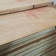 Playwood Ful Meranti