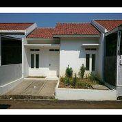 Ada Rumah Murah Siap Huni Ditengah Kota Bogor,Mauu?