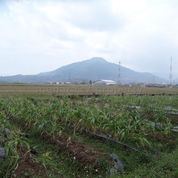 Tanah Potensial Untuk Gudang Dan Workshop Subang