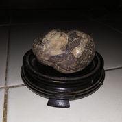 Suiseki Mini Batu Koral Bahan Dan Motif Unik Antik