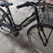 Sepeda Polygon Sierra Lite