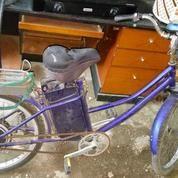 Sepeda Listrik Sunrace Bekas