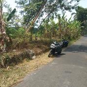 Tanah Jalan Kaliurang Jalan MPR Luas 750M