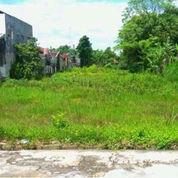 Tanah Jalan Palagan Km 9 Luas 1000 Mtr