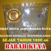 Obat Kista Jamu Babah Kuya Premium