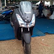 Yamaha LEXI 125 VVA 2019 ( STD )