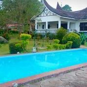 Sewa Villa Colibah 5 Sampai 12 Kamar Tidur Di Puncak Cipanas Villa Minang