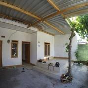 Dikontrakan Tahunan Rumah Di Lombok Barat, Nusa Tenggara Barat Rp 15 Juta (Nego)