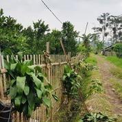 Tanah Kawasan Vila Dekat Rencana Wisata Dan Pemukiman
