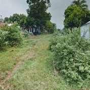 Tanah Strategis Pinggir Jalan Raya Bojong Klapanunggal Bogor