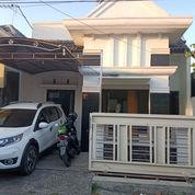 Rumah Di Teluk Grajakan Kota Malang