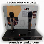 Mic Wireless Audiio Sound Series 2000 [New]