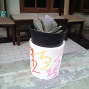 Pot Gerabah Lukis Motif Angka (Kaktus Dan Sukulen)