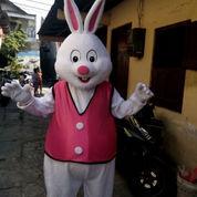 Sewa Badut Karakter Tayo, Bunny, Kelinci Dan Badut Sulap Mc Bali